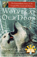Afbeelding van Wolves at Our Door