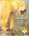 Afbeelding van Nanoq: Flat Out and Bluesome: a Cultural Life of Polar Bears
